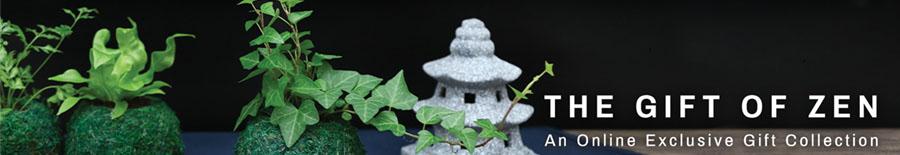 Kokedama (苔玉)