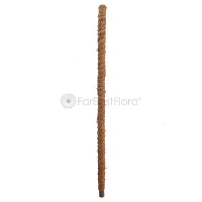 Coco Pole (4ft)