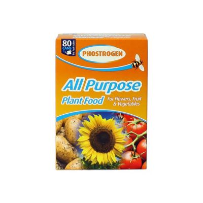 Phostrogen Plant Food (800g)
