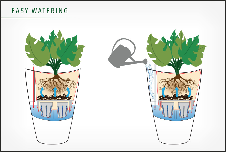 Plantplus Watering